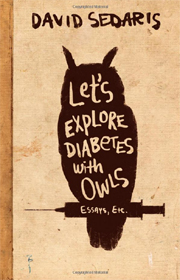 lets-explore-owls
